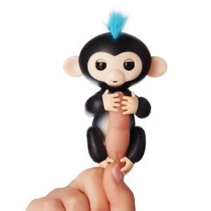 fingerlings finn ouistiti noir